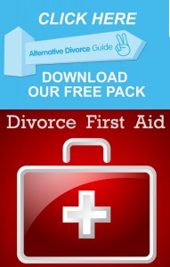 WEB-DivorceFirstAid_LARGE-382x600